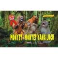 DM. Monyet-monyet Yang Lucu